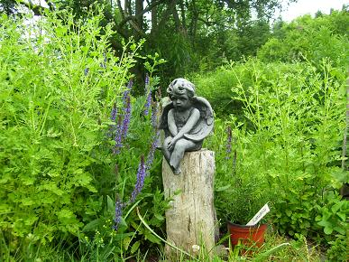 Garden Angel at Mountain Spring Homestead watches over Feverfew, Sage, Orange mint and Rosemary.
